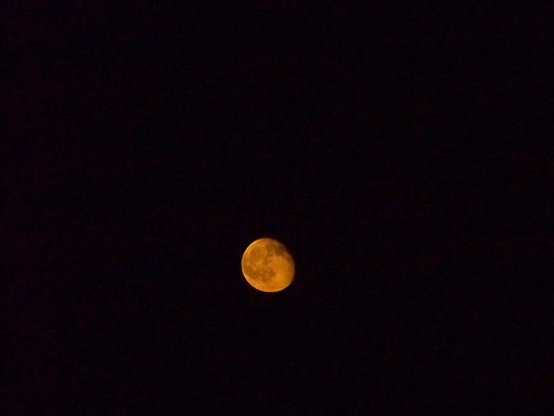 low orange moon, taken at Griffith Observatory