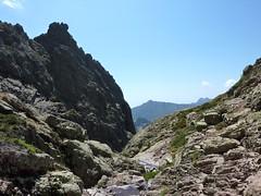 Arrivée au ruisseau de Bocca Rossa : vue du ruisseau vers l'aval