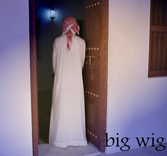 (   . / Bb:295272A4) Tags: big wig