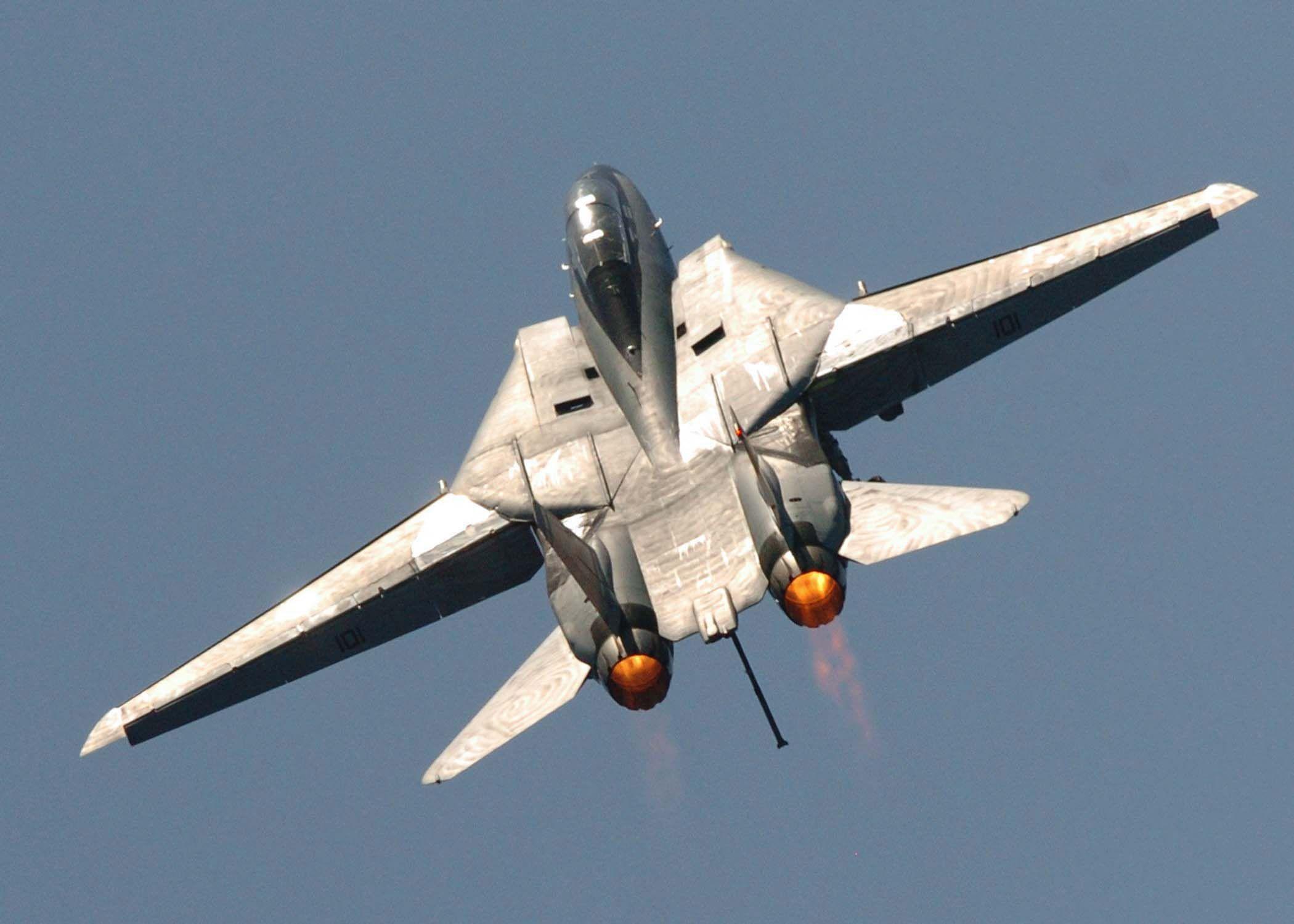 F 14 (戦闘機)の画像 p1_37