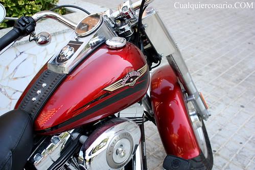Harley Davidson ( I )