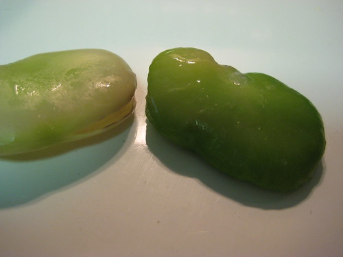 twice-shelled fava bean
