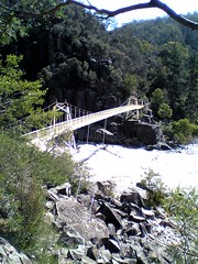 Alexandra Suspension bridge Launceston