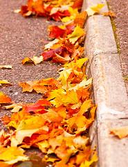 Autumn (G Er Foto) Tags: road autumn stone leaf natur sten hst vg lnn lv trottoar vikarbyn