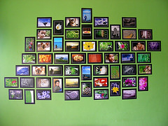 Take Your Photostream Home (Updated!) (Gilbert Rondilla) Tags: pictures camera house collage wall point photography photo shoot display philippines collection prints gilbert filipino digicam notmycamera own photowall pinoy photostream adik borrowedcamera pns rondilla notmyowncamera gilbertrondilla gilbertrondillaphotography luisianian