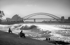 A future view of good surfing waves in Sydney Harbour, after Global warming has risen the seas. (Sean Davey Photography) Tags: pictures energy power wave australia alternativeenergy newsouthwales curl aquatic sydneyharbour globalwarming sydneyoperahouse sydneyharbourbridge renewableenergy greenenergy greenpower oceanwaves seawave alternativepower waterocean oceanswell seawaves h30 sydneysunset surferswave endlessenergy oceanpower renewablepower seaswell risingoceans risingseas wavesofthesea curlingwave wavesenergy seawaveenergy oceanwavepower oceanenergy oceanwaveenergy seapowermarine oceanwavepictures energyfromtheocean wavesoftheoceanwave endlesspower