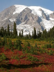 Mount Rainier (judi berdis) Tags: mountrainier glaciers wa colorphotoaward paradisevisitorcenter