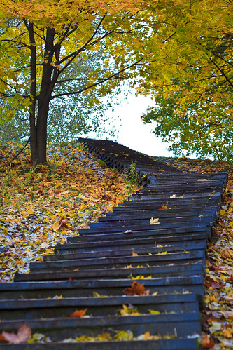Stairs to autumn