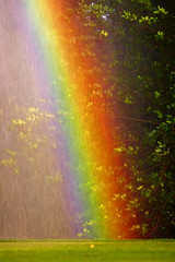 Sprinkler Rainbow at Old Key West (hz536n/George Thomas) Tags: fall water rainbow october florida disney disneyworld sprinkler canon5d 2009 smrgsbord cs3 oldkeywest p1f1 ef300mmf4lisusm