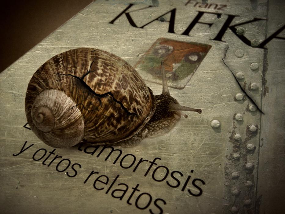 Metamorfosis (Metamorphosis)