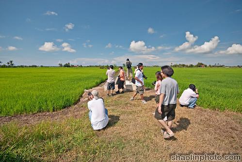 Shutter Asia Photographers