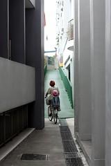 cycling to bukit timah (Avocadolite Family) Tags: bicycle singapore thalia negi aina