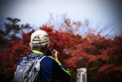 Hiker photographs autumn leaves at summit of Mt. Takao (torode) Tags: autumn mountain japan hiking  monkeys   takao     bentorode benjamintorode