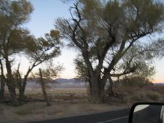 IMG_4277 (Joe Mud) Tags: highway hwy 395