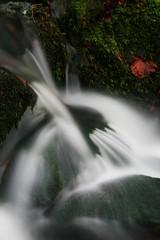 Weisses Gold der Erde (seeker0204) Tags: nature water forest waterfall wasser wasserfall herbst natur bach grün fels wald blätter moos langzeitbelichtung bachlauf waldbach