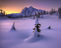Mt Shukasan From Picture Lake In Winter (kevin mcneal) Tags: winter lake snow frozen nationalpark seasons cascades mountbaker northcascadesnationalpark picturelake alemdagqualityonlyclub vosplusbellesphotos mountshukasan