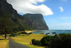 DSC_0120 (rbrophy) Tags: lordhoweisland