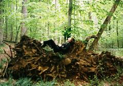 rest (Jacob Seaton) Tags: woods roots fallentree gunpowderfallsstatepark annablythemoore