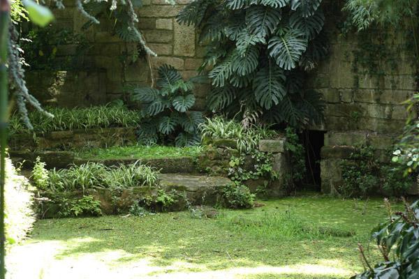 jardin-botanique-porto03