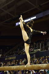 2017-02-11 UW vs ASU 113 (Susie Boyland) Tags: gymnastics uw huskies washington