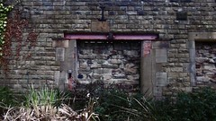 Sheffield Victoria station - bricked-up window  at rear of platform No1   February 2017 (dave_attrill) Tags: station wall platform 1 remains bricked up car park windows sheffield victoria site railway disused demolished closed february 2017 great central gcr lner mslr electrified woodhead manchester piccadilly passenger services 1970 goods 1981 beeching report cuts stocksbridge steel works single track line oughtibridge wadsy bridge deepcar penistone neepsend bridgehouses barnsley huddersfield local 1983 class 26 76 electric locomotive tommy master cutler pullman royal hotel holiday inn the navigators film 2003 hs2 plan