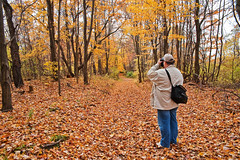 Shooting the forest...and the shooter! (tbower) Tags: travel autumn nature forest geotagged woods nikon raw nef candid foliage cs4 clevelandmetroparks scottalanjohnson hinckleyreservation d700 nikongp1 ohiotravel sigma2470f28hsm pse8