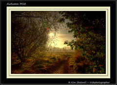 Autumn Mist (Irishphotographer) Tags: morning trees ireland mist misty dawn walks track quiet dusk path best irelands kinkade beautifulireland autumnmist irishphotographer colorphotoaward imagesofireland picturesofireland kimshatwell breathtakingphotosofnature beautifulirelandcalander wwwdoublevisionimageswebscom