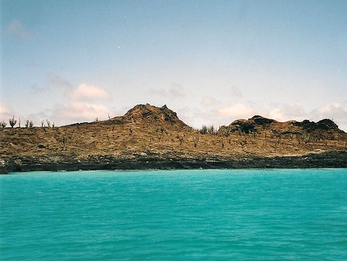 Galapagos-Rabida (1)