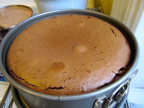 Chocolate Caramel Cheesecake: Cooling!