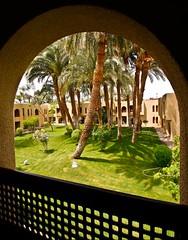 (708) Guten Morgen Luxor (avalon20_(mac)) Tags: africa travel geotagged egypt 500 misr eos40d schulzaktivreisen