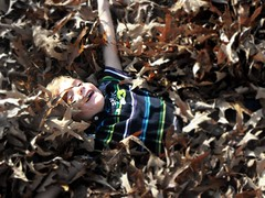 Logan in the leaves (NowWeAreFree) Tags: thanksgiving fall leaves outside logan 2009 picnik