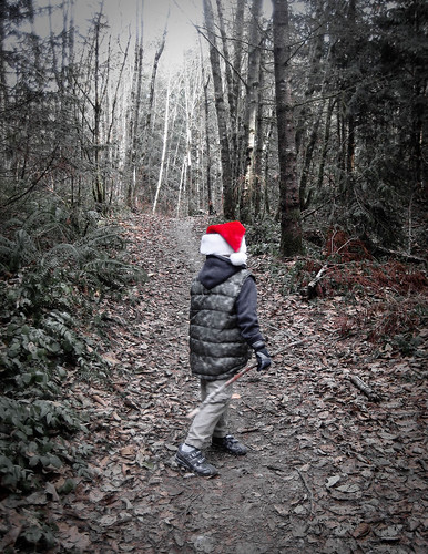 Walk in the woods with Santa's warm wolly hat