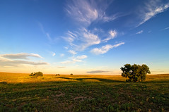 First Shadowing on the Pawnee Grasslands (Fort Photo) Tags: morning blue sky nature clouds sunrise landscape dawn nikon colorado tokina prairie grassland grasslands firstlight d300 pawnee pawneenationalgrassland 1116 firstshadows