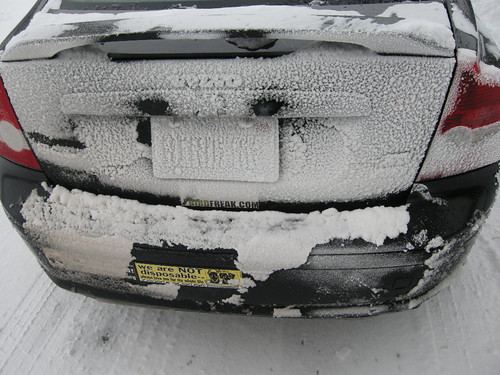 Snow Covering the Volvo