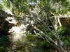 The Gran Cenote.