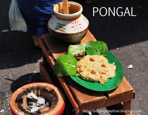 pongal 4