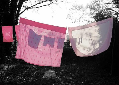 Playboy Pink