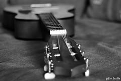 Musique (fabdebaz) Tags: 50mm distillery guitare aficionados k10d pentaxk10d justpentax