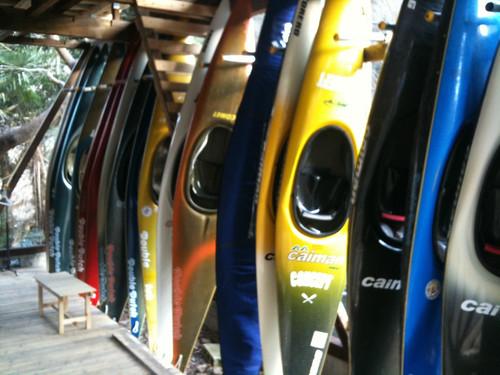 スラローム艇多種