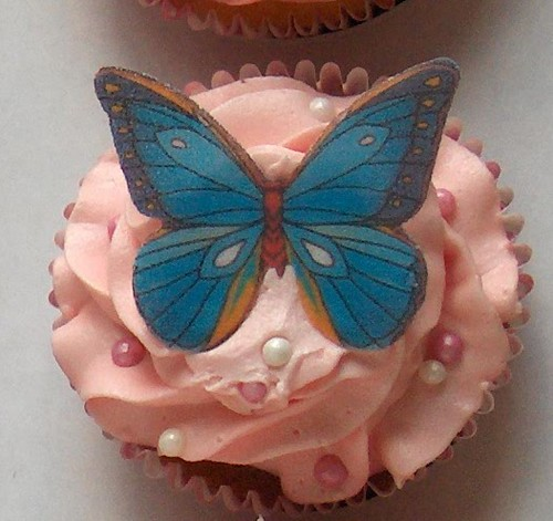 Butterfly blue on pink buttercream