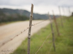 Fence friday...country road (ImagesByClaire) Tags: road fence 50mm dof country depthoffield wirefence itwaswhite dirtlane florabellatexture happyfencefriday mycargotfilthy itsnowdustcolored