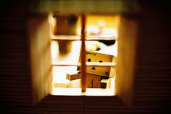 Danbo (C.L.I.W) Tags: wood film japan toy robot diy kid darkness nikonfm2  danbo nikkor50mmf14ais solaris400 danboard   amazoncomjp wiodow