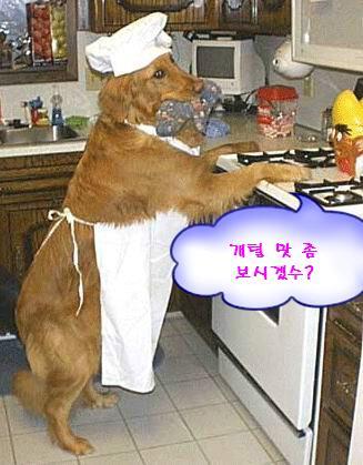 애완동물 에티켓