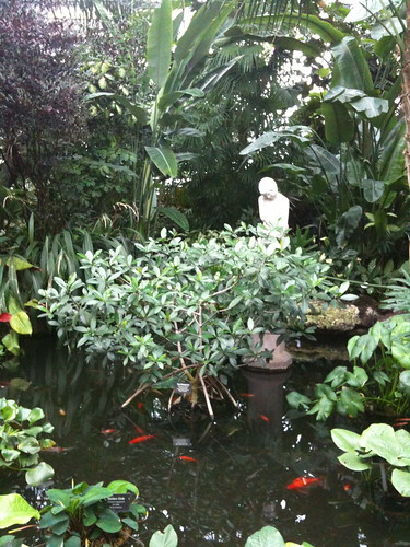 The entryway pond