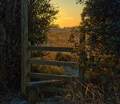 Time to wander  (better large) (Daisypops1) Tags: morning winter england field sunrise landscape dawn early frost shropshire walk scenic explore footpath fp stile magicunicornverybest