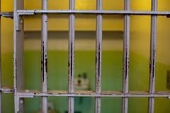 convicted-felon-travel-outside-us