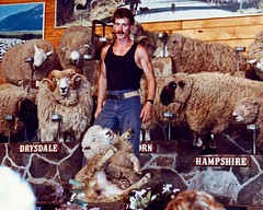 The Agrodome 1991 Rotorua New Zealand Sheep Shearing