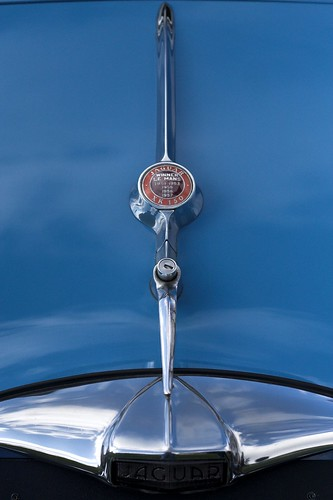 Jaguar bleue - logo capot