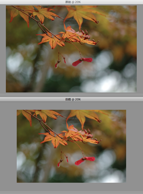 Before&After-CaptureNX2-A49