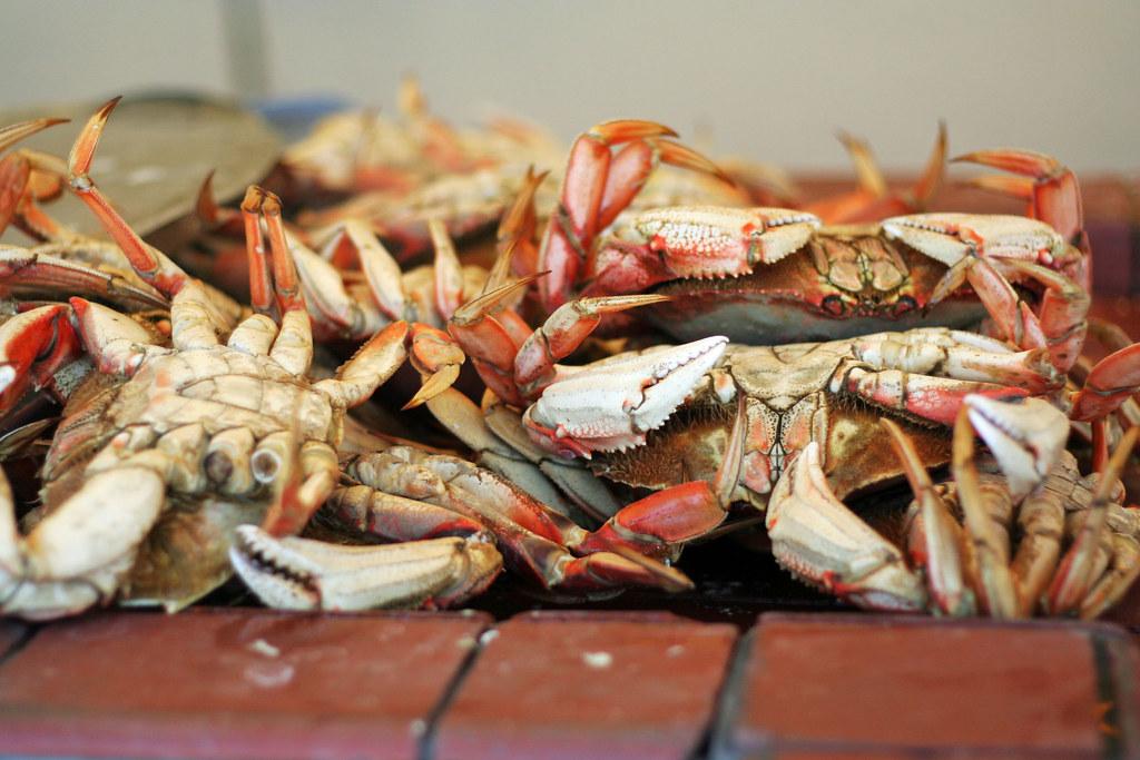west coast crabs